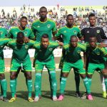 Ecureuils :La Guinée et la Mauritanie en préparation !